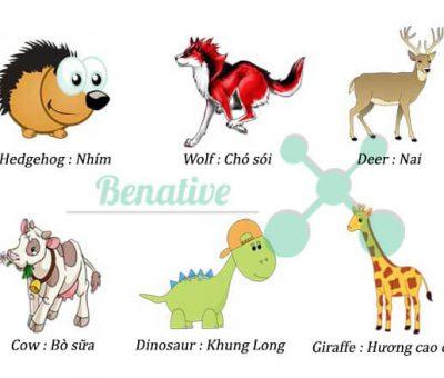 Từ vựng tiếng Anh chủ đề động vật